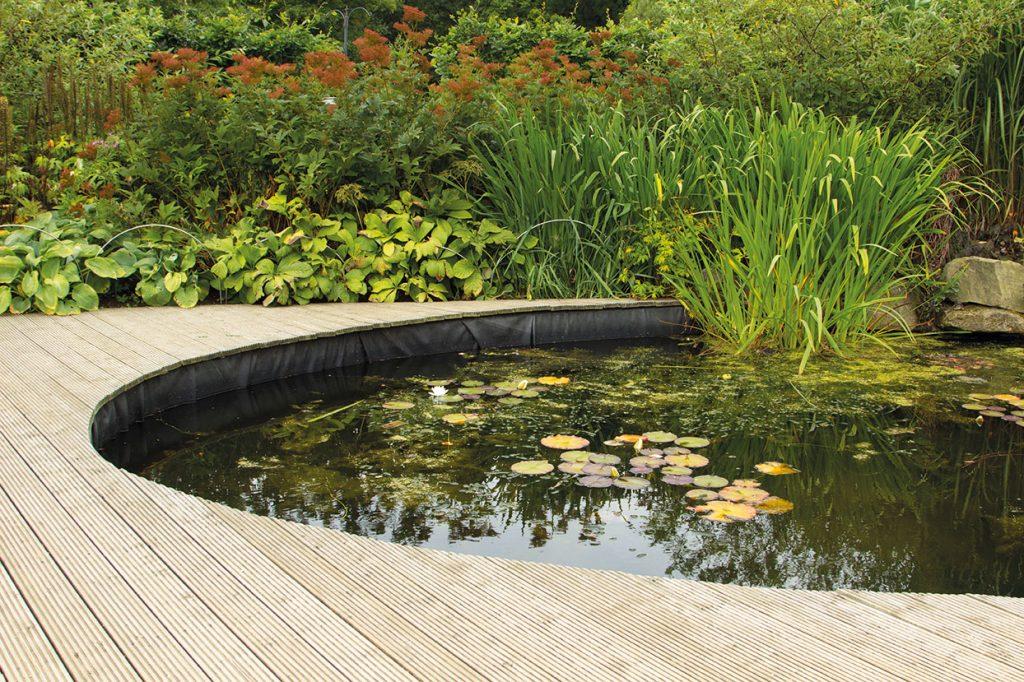 Beispielbild für einen schön angelegten Gartenteich