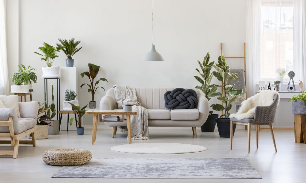 Wohnzimmer mit dekorativen Grünpflanzen